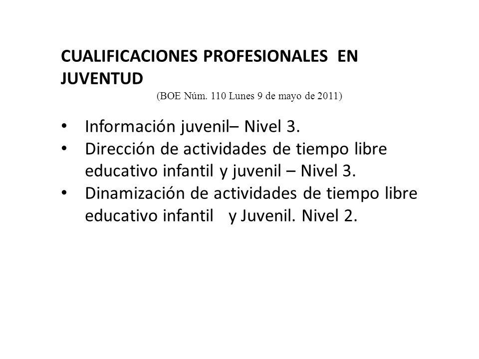 CUALIFICACIONES PROFESIONALES EN JUVENTUD (BOE Núm.