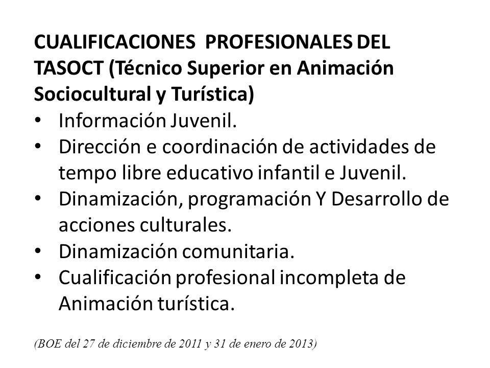 CUALIFICACIONES PROFESIONALES DEL TASOCT (Técnico Superior en Animación Sociocultural y Turística) Información Juvenil.