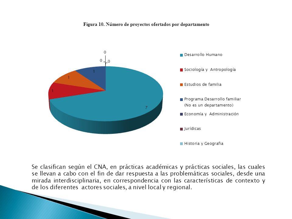 Se clasifican según el CNA, en prácticas académicas y prácticas sociales, las cuales se llevan a cabo con el fin de dar respuesta a las problemáticas sociales, desde una mirada interdisciplinaria, en correspondencia con las características de contexto y de los diferentes actores sociales, a nivel local y regional.