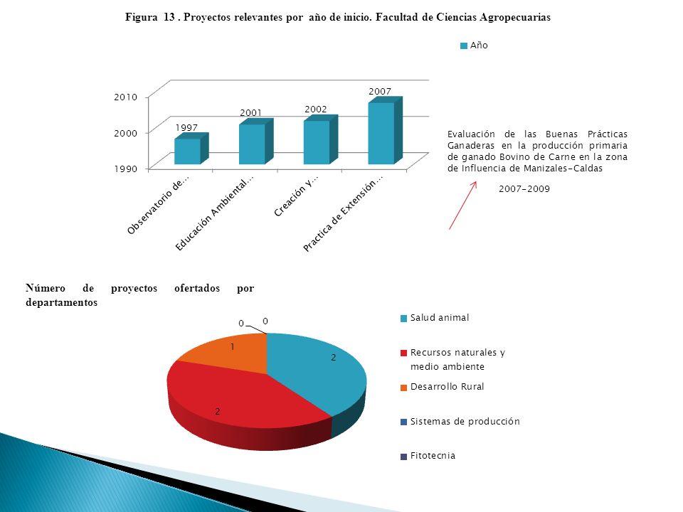 Figura 13. Proyectos relevantes por año de inicio.