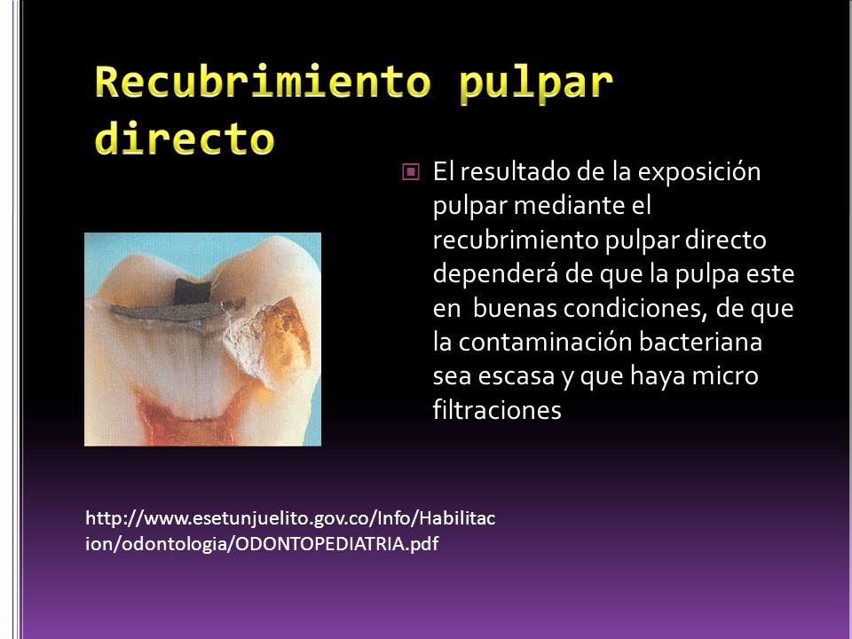 El resultado de la exposición pulpar mediante el recubrimiento pulpar directo dependerá de que la pulpa este en buenas condiciones, de que la contamin