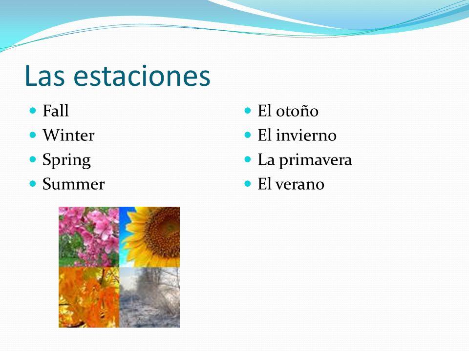 Las estaciones Fall Winter Spring Summer El otoño El invierno La primavera El verano