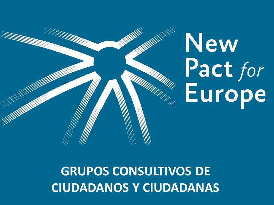 El proyecto Objetivo clave del proyecto: promover un debate público en toda la UE sobre el futuro de Europa liderado por un grupo de 11 fundaciones europeas Fase I (marzo-noviembre 2013): desarrollar las opciones estratégicas; analizar el Estado de la Unión y los retos de la UE con el Grupo de Reflexión y el Grupo Asesor.