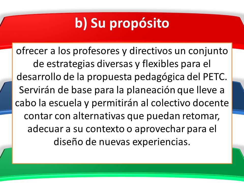 b) Su propósito ofrecer a los profesores y directivos un conjunto de estrategias diversas y flexibles para el desarrollo de la propuesta pedagógica de