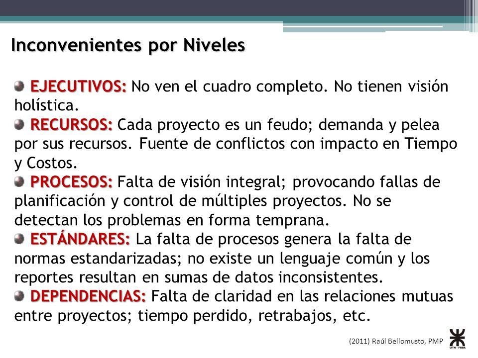 (2011) Raúl Bellomusto, PMP Inconvenientes por Niveles EJECUTIVOS: EJECUTIVOS: No ven el cuadro completo. No tienen visión holística. RECURSOS: RECURS