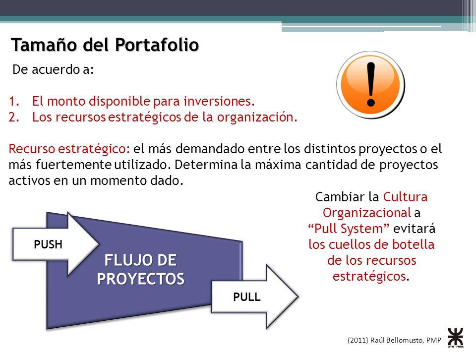 (2011) Raúl Bellomusto, PMP Tamaño del Portafolio De acuerdo a: 1.El monto disponible para inversiones. 2.Los recursos estratégicos de la organización