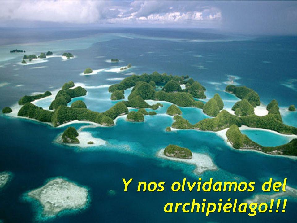 (2011) Raúl Bellomusto, PMP Y nos olvidamos del archipiélago!!!