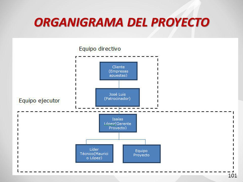 ORGANIGRAMA DEL PROYECTO 101