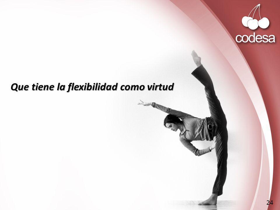 Que tiene la flexibilidad como virtud 24