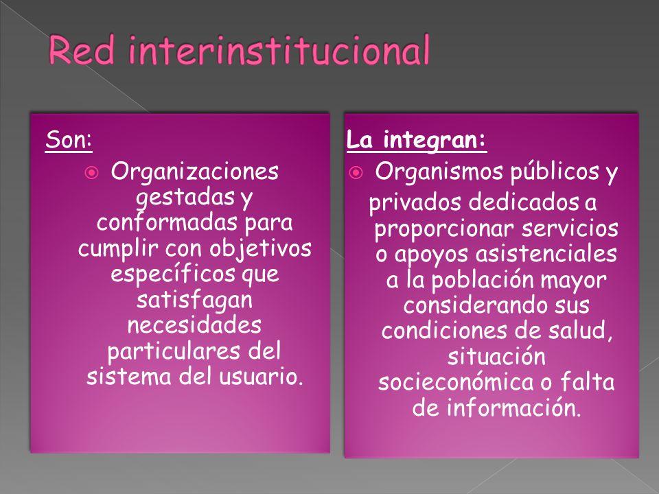 Son: Organizaciones gestadas y conformadas para cumplir con objetivos específicos que satisfagan necesidades particulares del sistema del usuario.