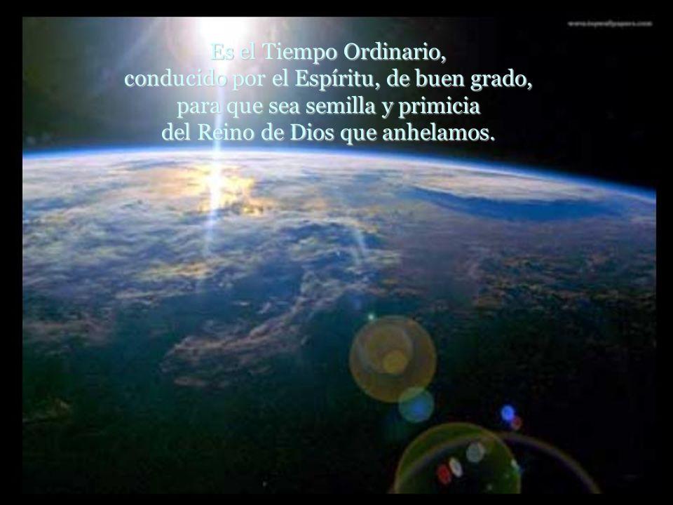 Es el Tiempo Ordinario, conducido por el Espíritu, de buen grado, para que sea semilla y primicia del Reino de Dios que anhelamos.