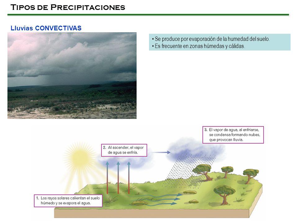 Tipos de Precipitaciones Lluvias CONVECTIVAS Se produce por evaporación de la humedad del suelo. Es frecuente en zonas húmedas y cálidas.