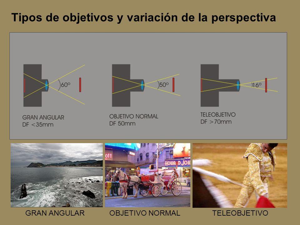 Tipos de objetivos y variación de la perspectiva GRAN ANGULAROBJETIVO NORMALTELEOBJETIVO
