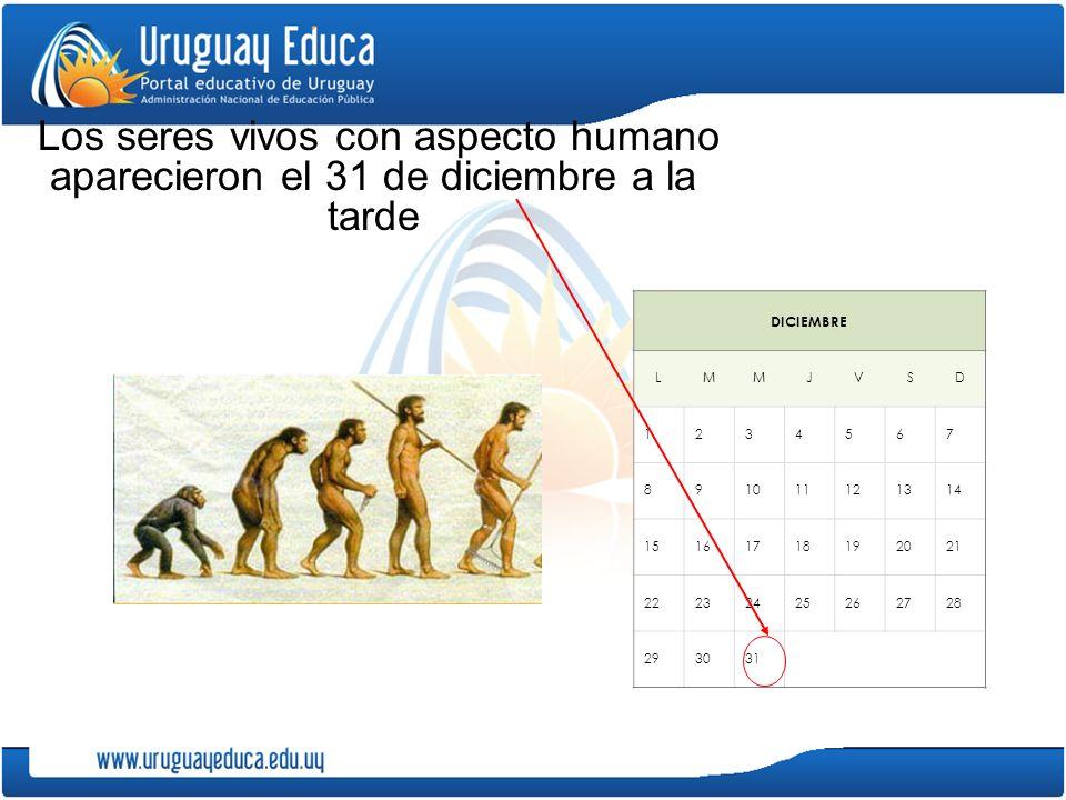 Los seres vivos con aspecto humano aparecieron el 31 de diciembre a la tarde DICIEMBRE LMMJVSD 1234567 891011121314 15161718192021 22232425262728 293031