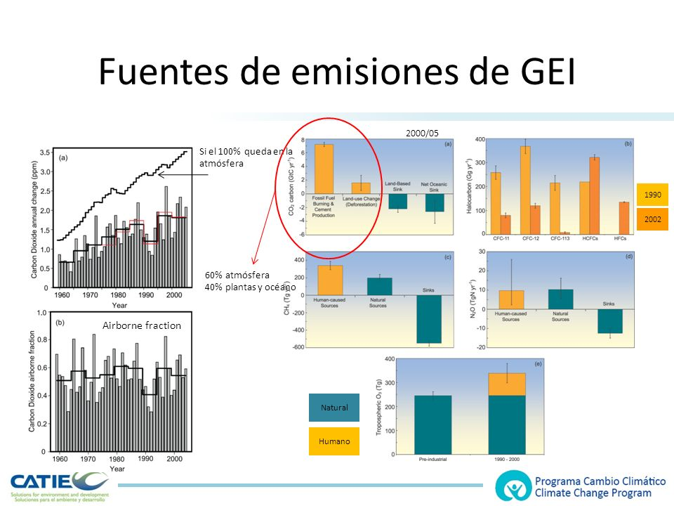 Fuentes de emisiones de GEI Natural Humano 60% atmósfera 40% plantas y océano 1990 2002 Si el 100% queda en la atmósfera Airborne fraction 2000/05