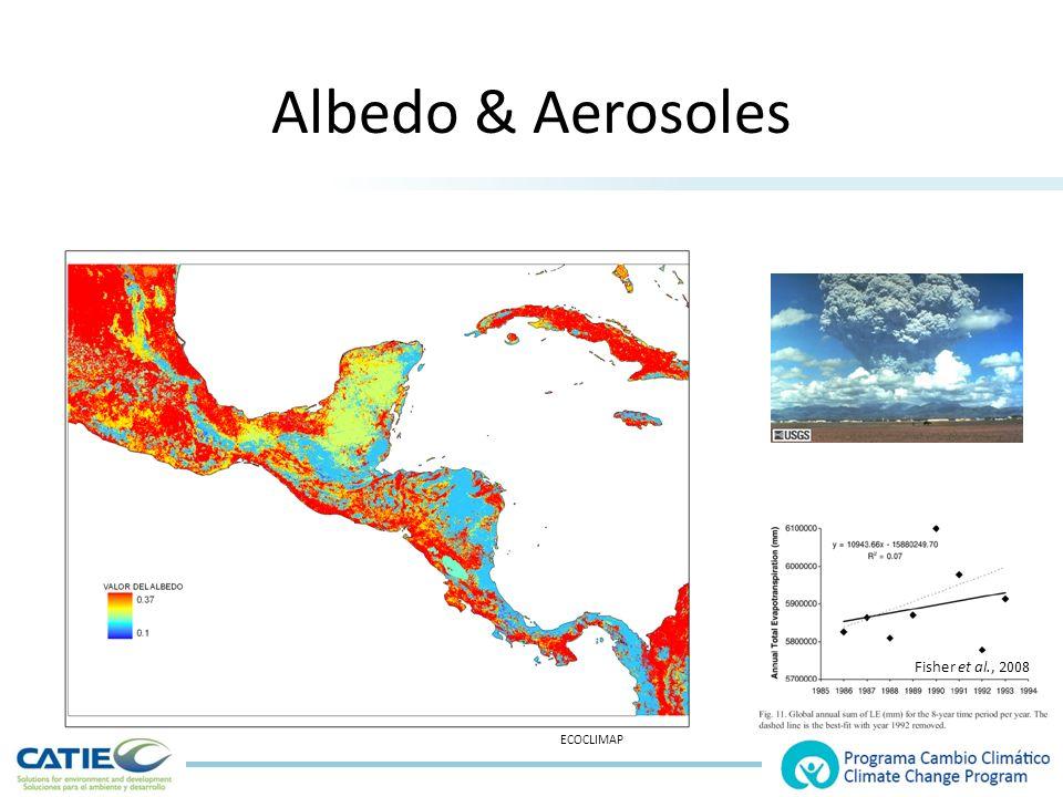 Albedo & Aerosoles ECOCLIMAP Fisher et al., 2008