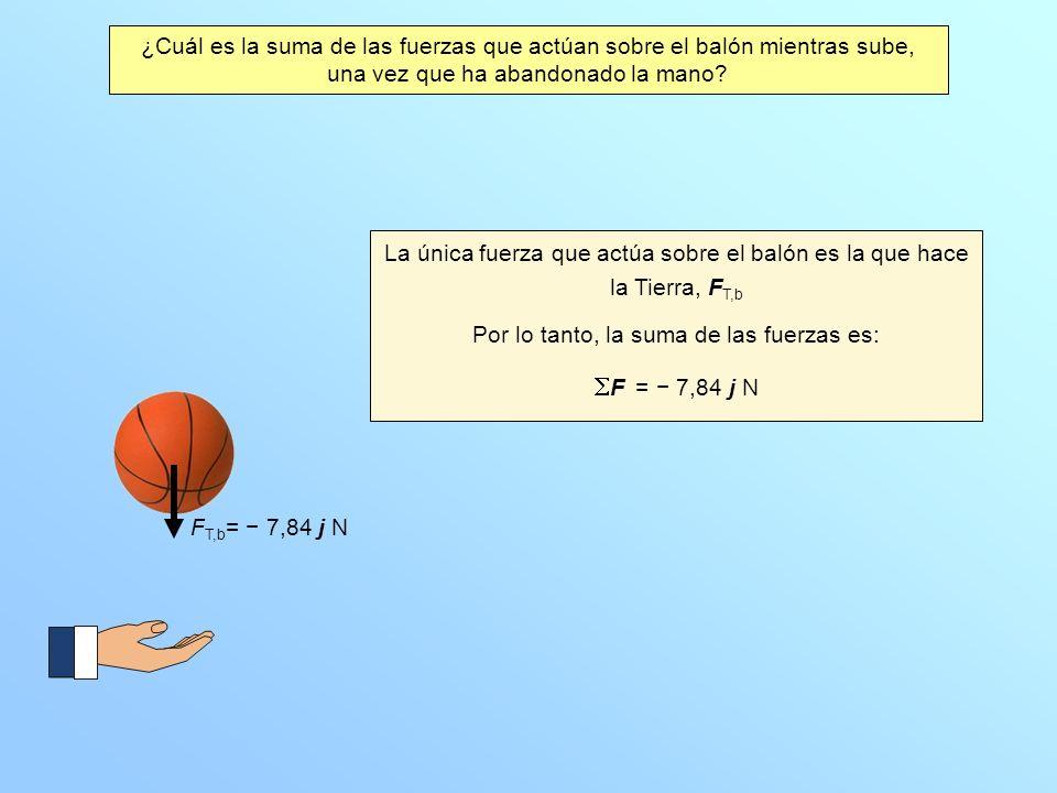 ¿Cuál es la suma de las fuerzas que actúan sobre el balón mientras sube, una vez que ha abandonado la mano? F T,b = 7,84 j N La única fuerza que actúa