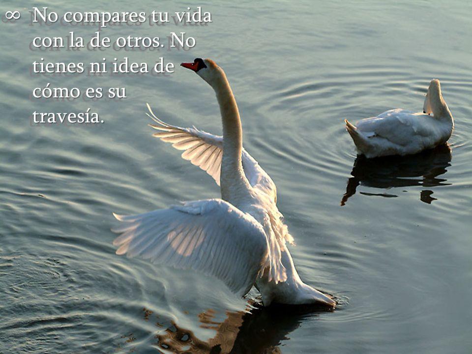 No compares tu vida con la de otros.