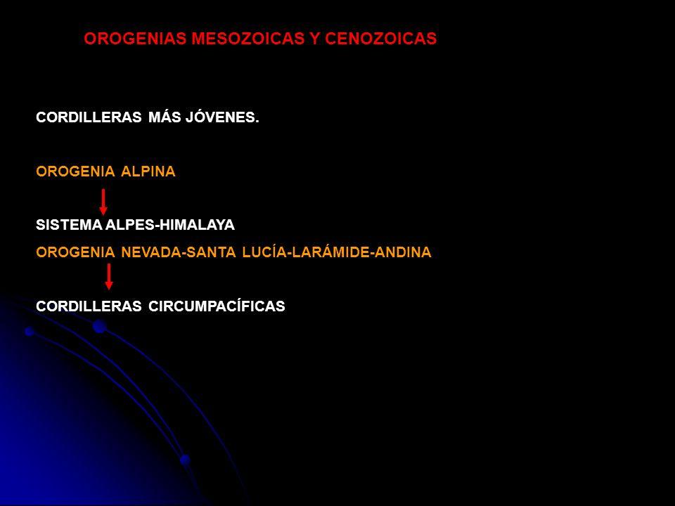 CORDILLERAS MÁS JÓVENES. OROGENIA ALPINA SISTEMA ALPES-HIMALAYA OROGENIA NEVADA-SANTA LUCÍA-LARÁMIDE-ANDINA CORDILLERAS CIRCUMPACÍFICAS OROGENIAS MESO