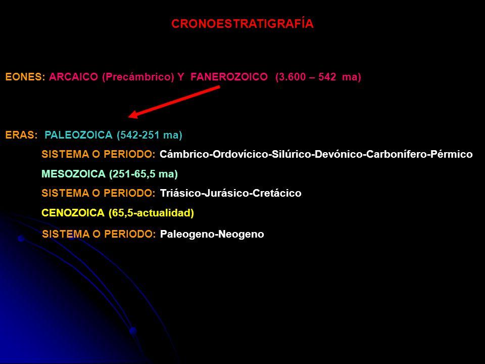 CRONOESTRATIGRAFÍA EONES: ARCAICO (Precámbrico) Y FANEROZOICO (3.600 – 542 ma) ERAS: PALEOZOICA (542-251 ma) SISTEMA O PERIODO: Cámbrico-Ordovícico-Si