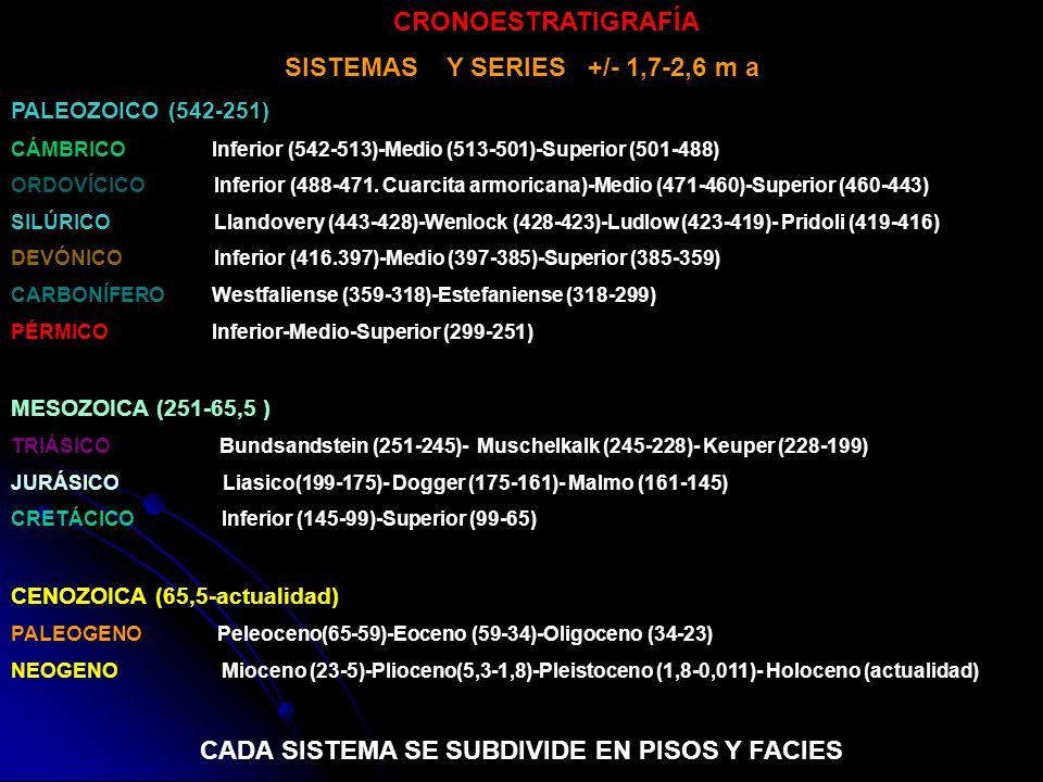 CRONOESTRATIGRAFÍA SISTEMAS Y SERIES +/- 1,7-2,6 m a PALEOZOICO (542-251) CÁMBRICO Inferior (542-513)-Medio (513-501)-Superior (501-488) ORDOVÍCICO In