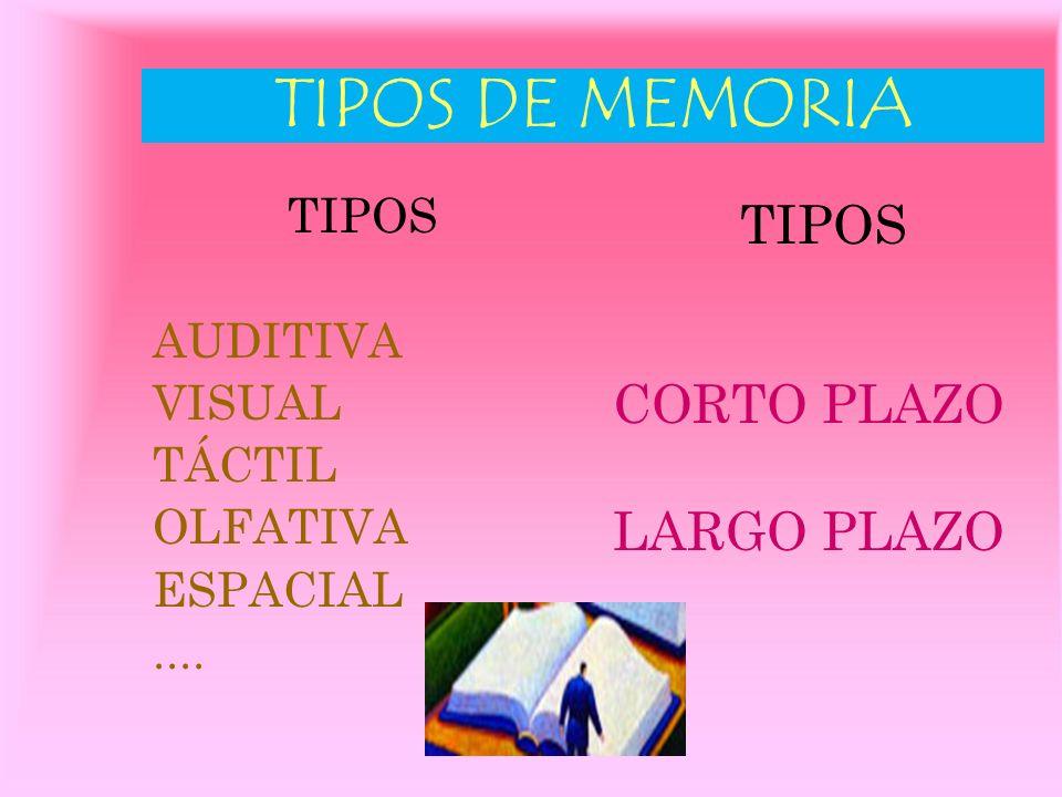 LA MEMORIA Es la capacidad que nos permite recordar datos e ideas precisas en el momento adecuado. Capacidad a EJERCITAR Y CULTIVAR.