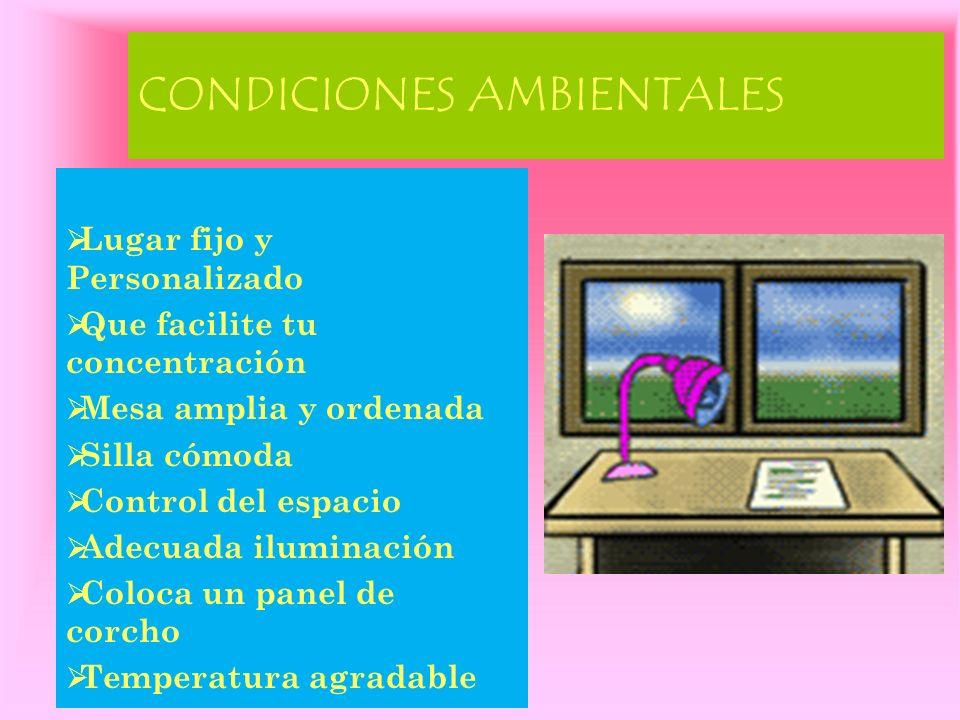 ESQUEMATIZACIÓN Extensión máx.1 folio Contiene ideas principales.