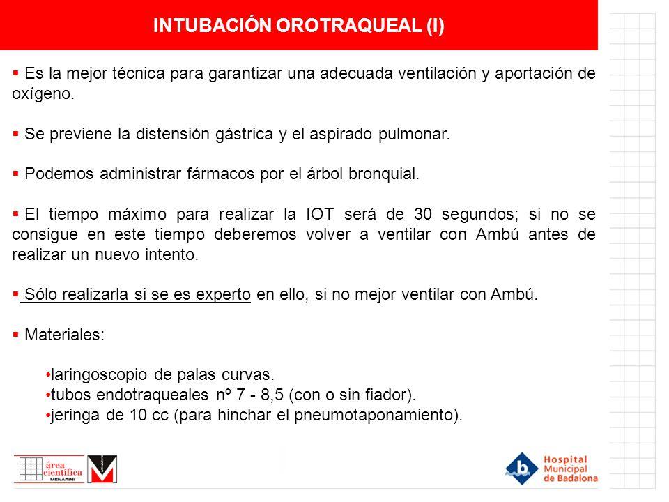INTUBACIÓN OROTRAQUEAL (II) DETALLE DE LA LARINGE Visualización del punto de acceso para la intubación orotraqueal.