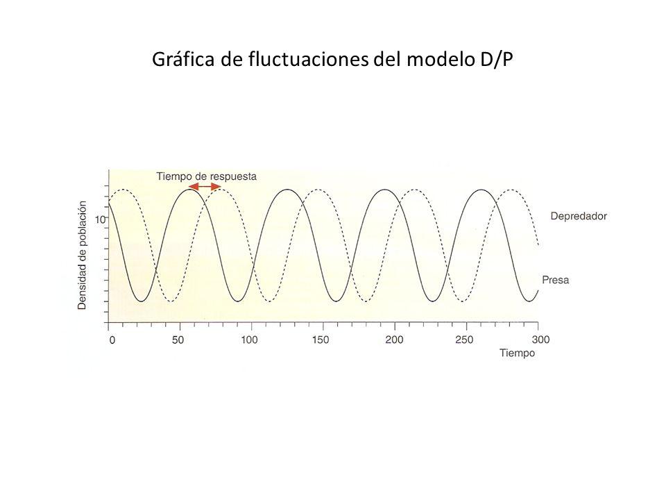 Gráfica de fluctuaciones del modelo D/P