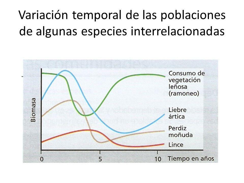 Variación temporal de las poblaciones de algunas especies interrelacionadas