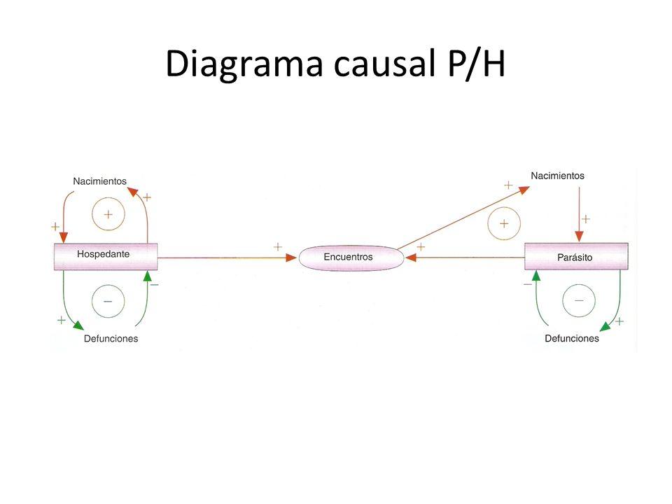 Diagrama causal P/H