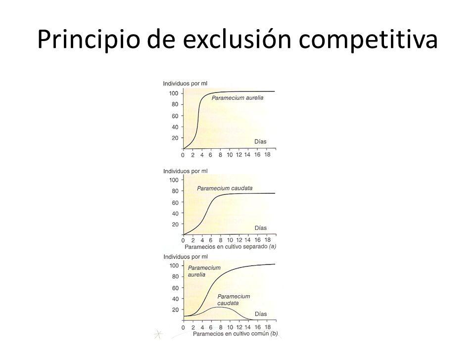 Principio de exclusión competitiva