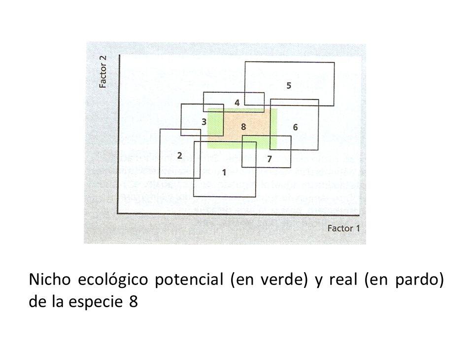 Nicho ecológico potencial (en verde) y real (en pardo) de la especie 8