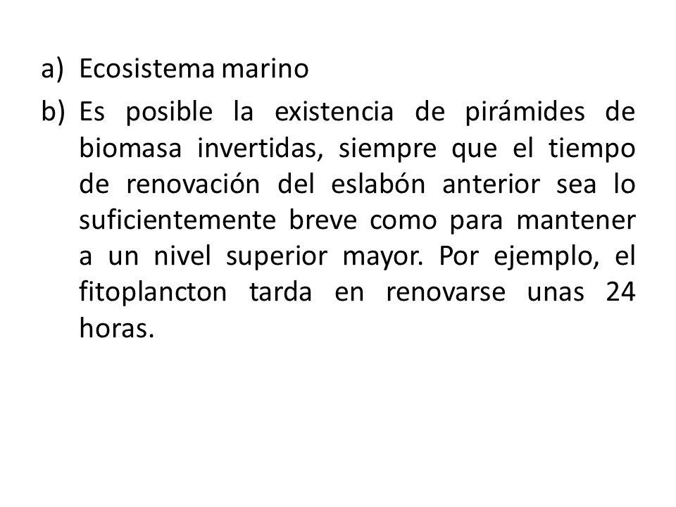 a)Ecosistema marino b)Es posible la existencia de pirámides de biomasa invertidas, siempre que el tiempo de renovación del eslabón anterior sea lo suficientemente breve como para mantener a un nivel superior mayor.