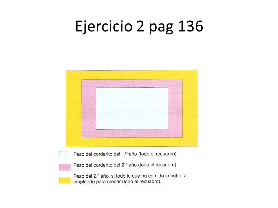 Ejercicio 2 pag 136
