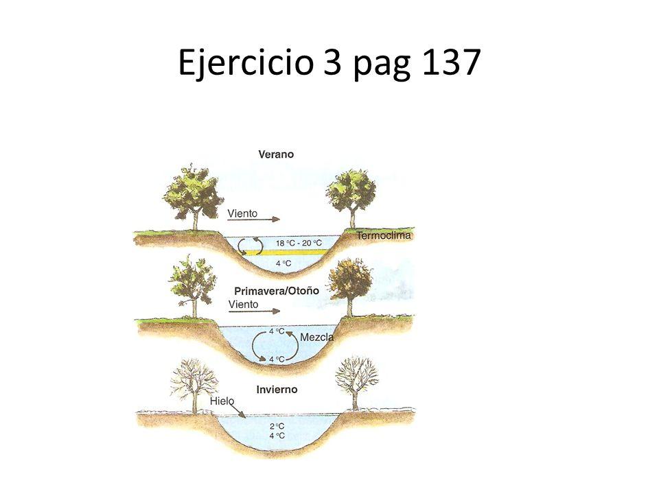 Ejercicio 3 pag 137