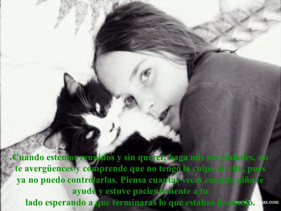 www.tonterias.com Siempre quise lo mejor para ti y he preparado los caminos que has debido recorrer