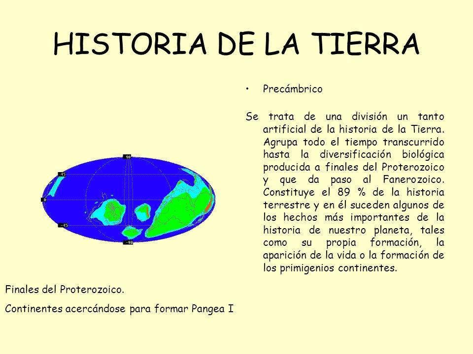 HISTORIA DE LA TIERRA Precámbrico Se trata de una división un tanto artificial de la historia de la Tierra. Agrupa todo el tiempo transcurrido hasta l