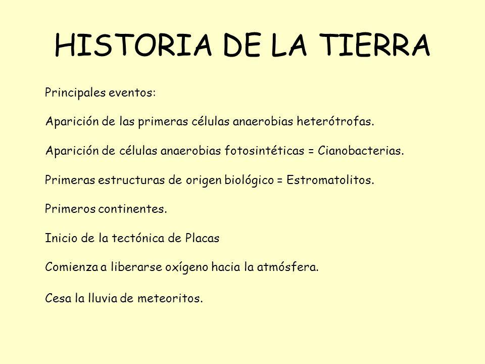 HISTORIA DE LA TIERRA Principales eventos: Aparición de las primeras células anaerobias heterótrofas. Aparición de células anaerobias fotosintéticas =
