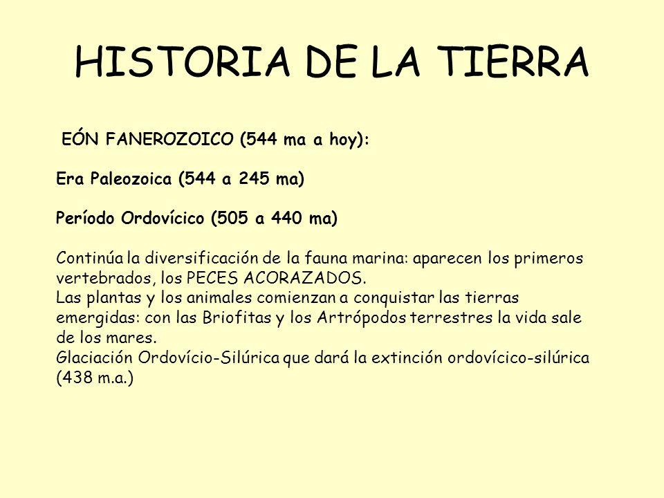 HISTORIA DE LA TIERRA EÓN FANEROZOICO (544 ma a hoy): Era Paleozoica (544 a 245 ma) Período Ordovícico (505 a 440 ma) Continúa la diversificación de la fauna marina: aparecen los primeros vertebrados, los PECES ACORAZADOS.