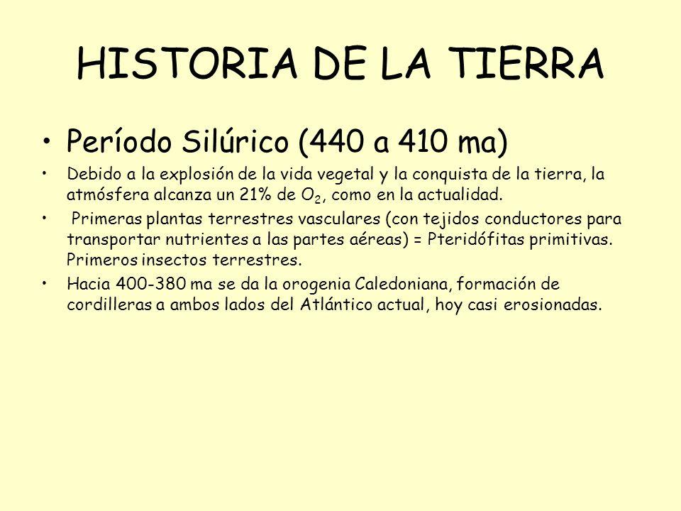 Período Silúrico (440 a 410 ma) Debido a la explosión de la vida vegetal y la conquista de la tierra, la atmósfera alcanza un 21% de O 2, como en la actualidad.
