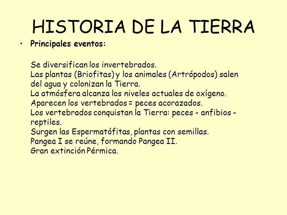 HISTORIA DE LA TIERRA Principales eventos: Se diversifican los invertebrados. Las plantas (Briofitas) y los animales (Artrópodos) salen del agua y col
