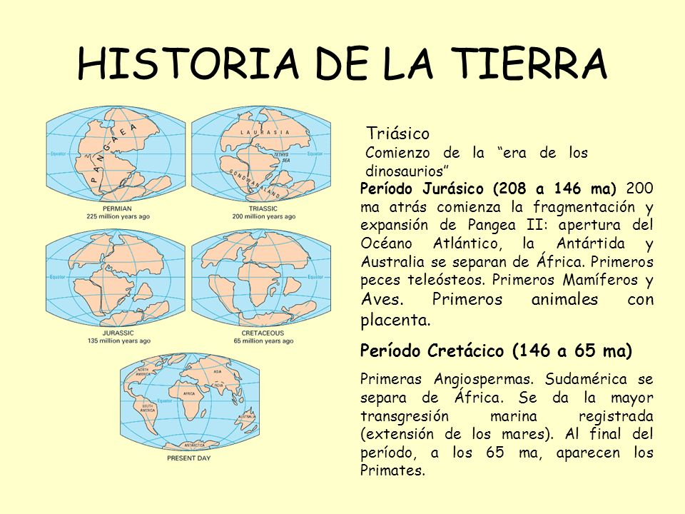 HISTORIA DE LA TIERRA Triásico Comienzo de la era de los dinosaurios Período Jurásico (208 a 146 ma) 200 ma atrás comienza la fragmentación y expansión de Pangea II: apertura del Océano Atlántico, la Antártida y Australia se separan de África.