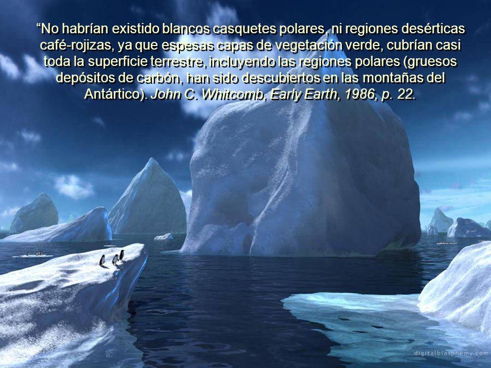 Antes del diluvio, (Cuando vivían los dinosaurios), la Tierra tenía un clima tropical o subtropical en la mayor parte de su superficie, y había una ab