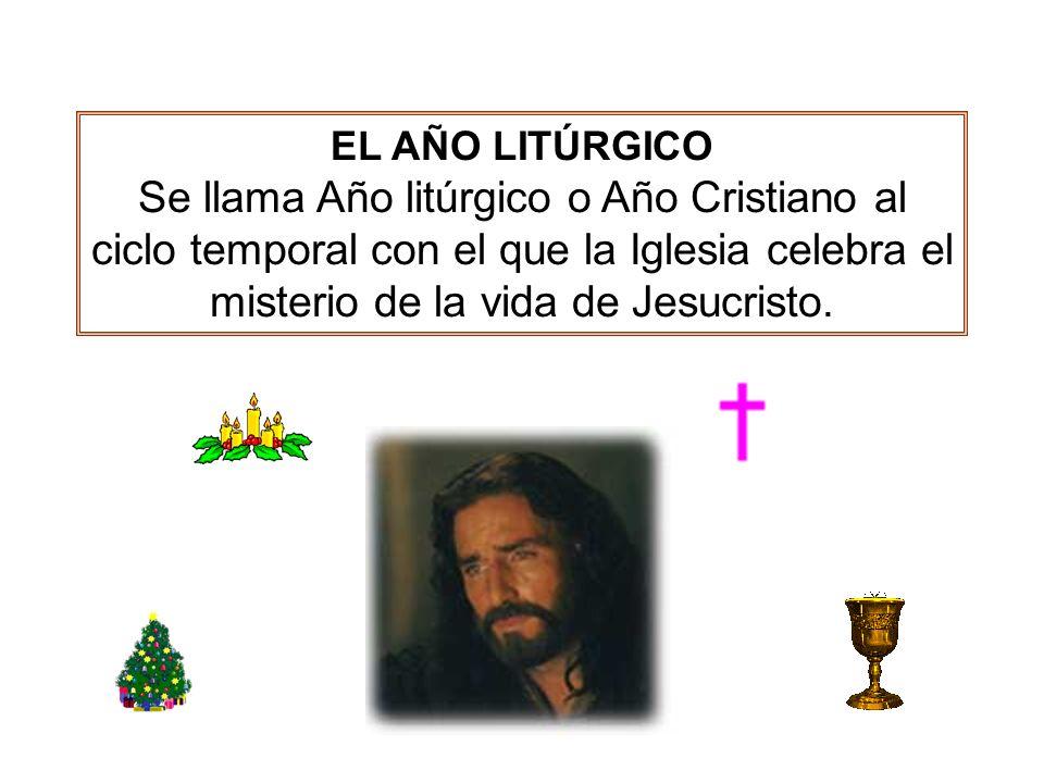 EL AÑO LITÚRGICO A lo largo del año desarrolla todo el misterio de Cristo, desde la Encarnación y la Navidad hasta la Ascensión, Pentecostés y la expectativa de dichosa esperanza y venida del Señor.