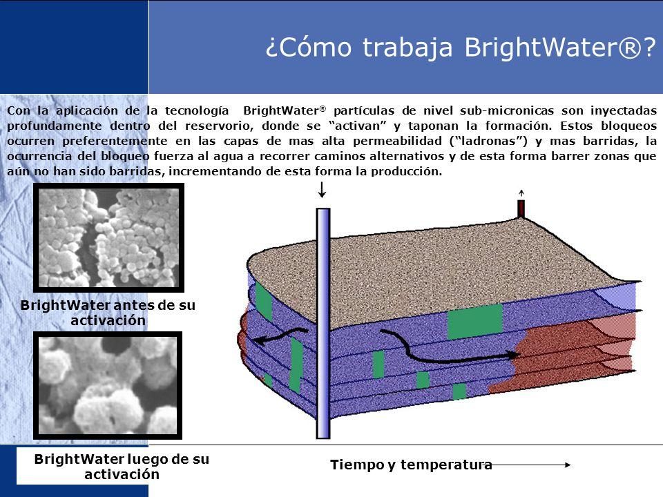 Con la aplicación de la tecnología BrightWater ® partículas de nivel sub-micronicas son inyectadas profundamente dentro del reservorio, donde se activ