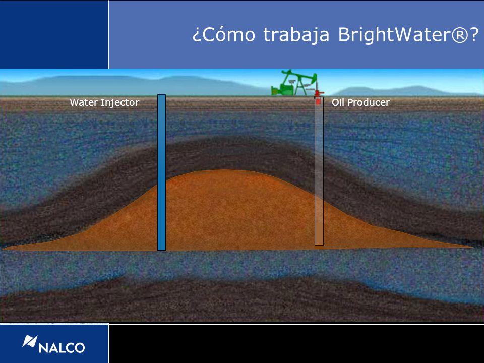Water InjectorOil Producer ¿Cómo trabaja BrightWater®?