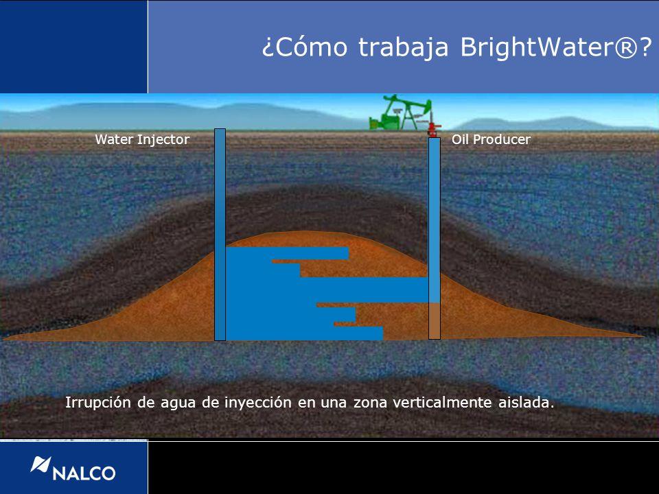 Irrupción de agua de inyección en una zona verticalmente aislada. Water InjectorOil Producer ¿Cómo trabaja BrightWater®?