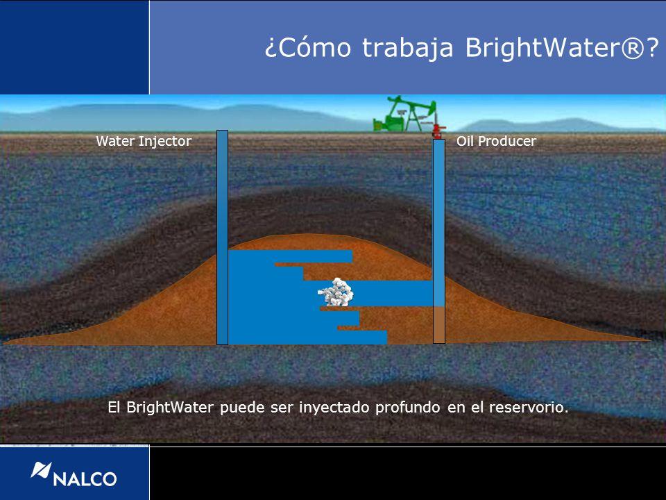 El BrightWater puede ser inyectado profundo en el reservorio. Water InjectorOil Producer ¿Cómo trabaja BrightWater®?