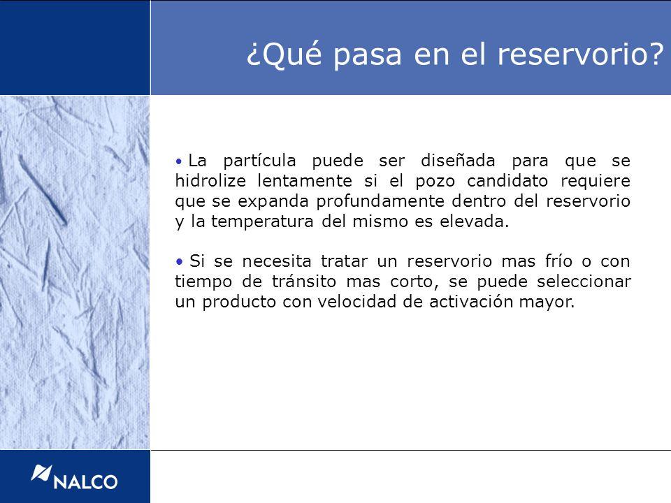 La partícula puede ser diseñada para que se hidrolize lentamente si el pozo candidato requiere que se expanda profundamente dentro del reservorio y la